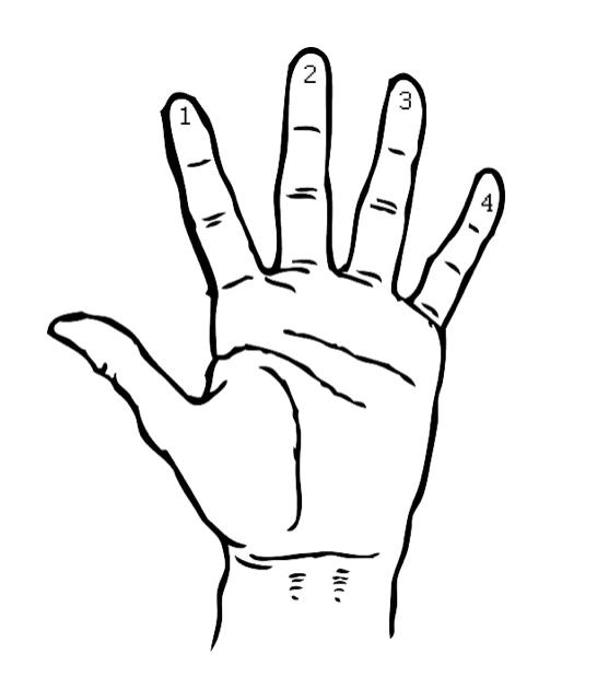 Пальцы левой руки при игре на гитаре